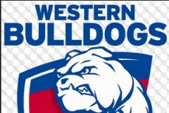 Allied Express Sponsor AFL's Western Bulldogs